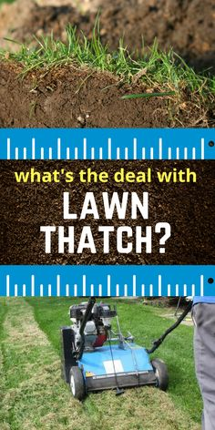Too much thatch can prevent sun, moisture, and fertilizers from reaching your soil.