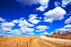 Kansas prairie road--pretty cool photoblog