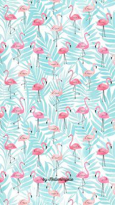 E ai? Que esta tbm nessa vaibe flamingo? Summer Wallpaper, Trendy Wallpaper, Pretty Wallpapers, Screen Wallpaper, Cool Wallpaper, Pattern Wallpaper, Iphone Wallpapers, Pink Flamingo Wallpaper, Bedroom Wallpaper