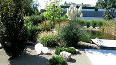 Modern garden, kertépítés Modern, Plants, Design, Trendy Tree, Plant, Planets