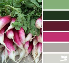 radishing hues