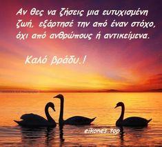 Greek Quotes, Swan, Animals, Animaux, Swans, Animal, Animales, Animais