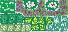 Pflanzenplan