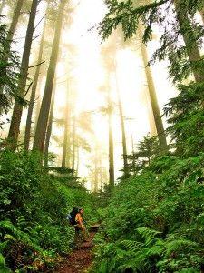 West Coast Trail, Vancouver Island, British Columbia