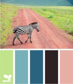 Color crossing .