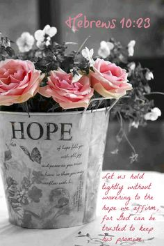 Hebrews 10:23 ~ Let us hold tightly without wavering to the hope we affirm, for God can be trusted to keep his promise.