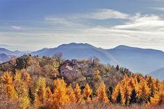 Conche immerso nei larici autunnali - Itinerari Brescia - Fotografia di Francesca Emer ©