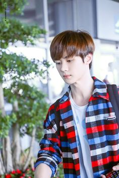 Cre: on pic Winwin, Nct U Members, Nct Dream Members, Nct 127, Yang Yang, Taeyong, Jaehyun, Sm Rookies, Boy Groups