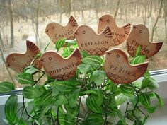;) Ceramic Birds, Ceramic Pottery, Creta, Dry Clay, Bird Art, Clay Crafts, Bird Houses, Herbs, Place Card Holders