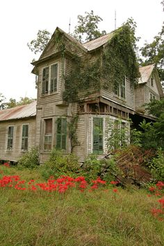 Abandoned home - Wonderful shutters - Thomas County, Georgia