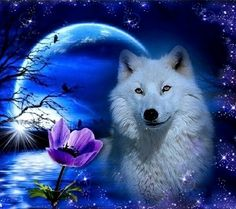 White wolf by moonlight