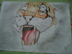 tiger sketch  ♡