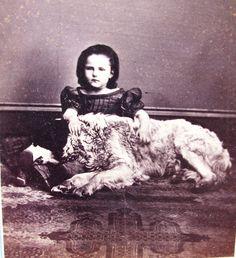 Civil War Era CDV Photo of Cute Little Girl with Big Beautiful Dog Sunbury PA | eBay