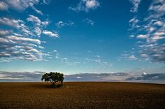 Baixo Alentejo. Foto de Luís Reininho www.casanaaldeia.com