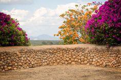 HF Stone Wall with Flowers  digitaler von HispaniolaFineart auf Etsy