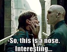 17 Harry Potter Memes That Are Hilarious and Funny! harry potter memes- voldemort and harry nose The post 17 Harry Potter Memes That Are Hilarious and Funny! appeared first on Paris Disneyland Pictures. Harry Potter Humor, Harry Potter Images, Harry Potter Facts, Harry Potter Characters, Harry Potter World, Funny Harry Potter Pictures, Harry Potter Things, Harry Potter Deleted Scenes, Memes Humor