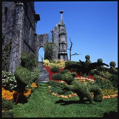 And the rest of the castle's lush garden.