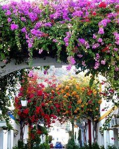 Honeymoon | Agora que estamos oficialmente no inverno, bateu uma saudades louca da primavera e do verão, de ver muitas flores e cores. Época de programar a lua de mel e pegar um avião para o hemisfério norte, curtir o que as praias lá de cima tem de bom. Mallorca, na Espanha, é um cartão postal clássico, a pura luz do mediterrâneo na opinião de Miró. A ilha tem uma das costas mais bonitas da Europa e praias paradisíacas. Já colocou o biquini na mala? #icasei #wedding #casamento #luademel…