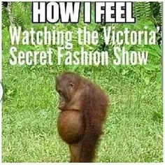 OMG so true!  If anyone can make you feel like a hairy potbellied chimp its a Victoria's Secret Angel!