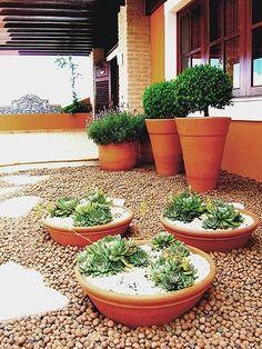 Paisagismo: Vaso de Barro BBB - Bonito, Barato e Bom - Cores da Casa
