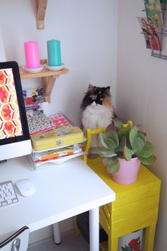 Home office I will take the cat too :) Cool Office Space, Office Space Design, Office Workspace, Office Interior Design, Office Interiors, Home Office, Office Decor, Office Ideas, Modern Scandinavian Interior