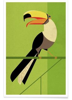 Toucan by Dieter Braun as Poster Retro Vintage, Vintage Birds, Brazil Art, Toucan, Wall Art Prints, Canvas Prints, Bird Poster, Affordable Wall Art, Art Mural