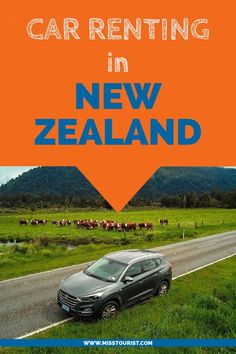 Deciding to rent a car in New Zealand can be one of the biggest favors you will . to rent a car in New Zealand can be one of the biggest favors you will . Travel Advice, Travel Guides, Travel Tips, Travel Plan, Visit Australia, Australia Travel, New Zealand Winter, North Island New Zealand, Christchurch New Zealand