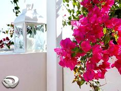 Laid back mornings on the balcony of your room in Mitos Suites, in Naxos, enjoying the view of the Aegean and the playful colours of the bougainvilleas, claiming their place outside your window. #aquavista #mitossuites #mitossuitesnaxos #naxos #aghiosprokopios #travel #travelgram #instagood #instamood #bestoftheday #iloveellada #travel_greece #nature_greece #reasonstovisitgreece #beautifuldestinations #beautifulhotels by aqua_vista_hotels. travel_greece #reasonstovisitgreece…