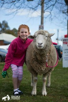 """""""If we could live happy and healthy lives without harming others... why wouldn't we?"""" ~ www.edgarsmission.org.au"""