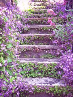 purple flower lined stone step staircase