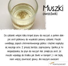 Sposób na muszki owocówki Detox Your Home, Kitchen Organisation, Organization, In Case Of Emergency, Diy Cleaners, Useful Life Hacks, Detox Drinks, Good Advice, Good To Know