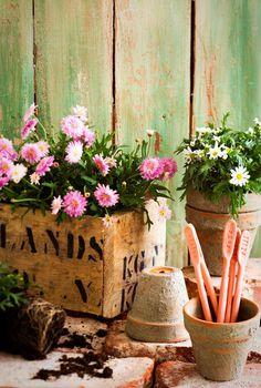 Kotivinkki: Näin teet nimikyltit yrteille. Tarvitaan vain savea ja kirjainleimasimet. --- Name your herbs with clay and letter stamps.