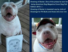 This is one of the prizes Dexter won for winning the competition for American Dog Magazine Cover contest---a drawing by Julia with Drawings for Pit Bulls and those who love 'em..a 14 yr old aspiring artist that helps causes with her drawing. Such an inspiration for our younger generation..