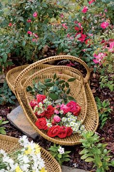 Fresh Roses in Basket from Victoria Magazine March/April 2008 Cut Flowers, Beautiful Flowers, Fresh Flowers, Rose Basket, Flower Baskets, Victoria Magazine, Colorful Roses, Rose Cottage, My Secret Garden