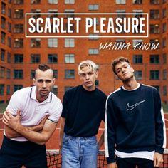 Scarlet Pleasure - Wanna Know en mi blog: http://alexurbanpop.com/2015/11/17/scarlet-pleasure-wanna-know/