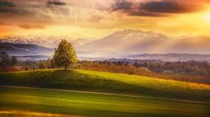 Switzerland, 4k, 5k wallpaper, 8k, Alps, mountains, meadows, trees (horizontal)