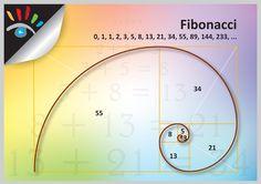 De rij van Fibonacci is genoemd naar Leonardo van Pisa (Italiaanse wiskundige), bijgenaamd Fibonacci. Hij wordt vaak beschouwd als de eerste westerse wiskundige die origineel werk publiceerde sinds de Griekse oudheid. De rij (ook wel reeks van Fibonacci genoemd) begint met 0 en 1 en vervolgens is elk volgende element van de rij steeds de som van de twee voorgaande elementen. De reeks: 0, 1, 1, 2, 3, 5, 8, 13, 21, 34, 55, 89, 144, 233, 377, 610, 987, 1597, 2584, 4181, 6765, 10946, ...