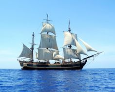 HMS Bounty, built in Lunenberg, Nova Scotia, casualty of Hurricane Sandy. We  were in this town in NV when the Bounty went down.