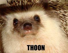 Very thoon.