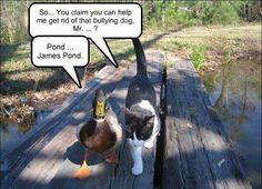 Pond...  James Pond!