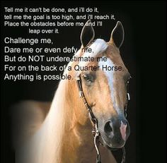 I love my horse quotes | Quotes About Life