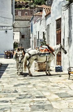 Greek Island Transportation - usual transport  in the alleys of villages - www.house2book.com
