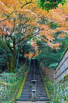 Have you been to Izumo in Shimane Prefecture?  #japankuru #japan #travel #temple #izumo  #taisha #shimane