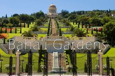 Have you been to the Baha'i Gardens in Haifa? You don't want to miss it!