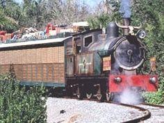 Wildlife Express Train to Rafiki's Planet Watch - Animal Kingdom - Video - 2008 Panama City Beach Florida, Panama City Panama, Sevierville Tennessee, Sea World, Vacation Places, Walt Disney World, Animal Kingdom, The Good Place, Cool Pictures