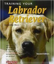 Kết quả hình ảnh cho labrador books