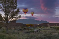 Hot Air Ballooing at Dawn above the Hyatt Regency Tamaya Resort & Spa located at the Santa Ana Pueblo, NM, USA