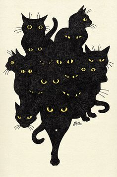 Ideas For Cats Black Illustration Kitty Crazy Cat Lady, Crazy Cats, I Love Cats, Cute Cats, Adorable Kittens, Art Et Illustration, Cat Illustrations, Cat Art, Oeuvre D'art