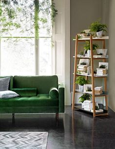 green sofa, coffee walls... if only a plant blind like this existed.
