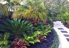 nz tropical gardens - Google Search